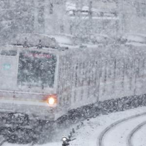 雪のフィルターde日本画調にメトナナトップを撮る