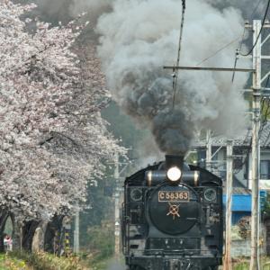 今蘇る!17年前の上長瀞の桜とパレオエクスプレスC58363