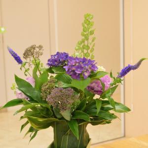 【教室の案内】紫陽花のトールサイズアレンジレッスン