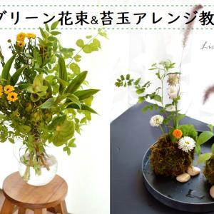 【教室の案内】夏のグリーン花束&苔玉のフラワーアレンジ