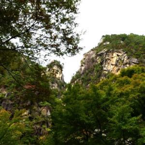 【登山】山梨県西沢渓谷