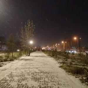 今期初めての積雪