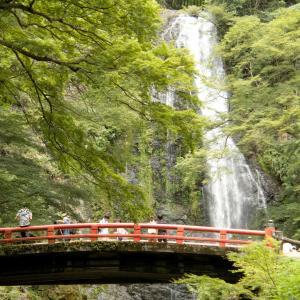 滝道散歩(2)