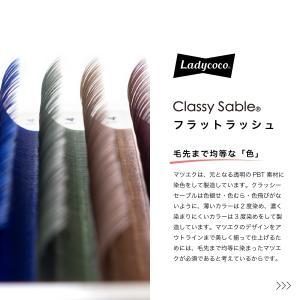 ブラックもカラーも、毛先まで均等な『色』を表現したクラッシーセーブル