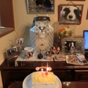 アムロ14歳のお誕生日