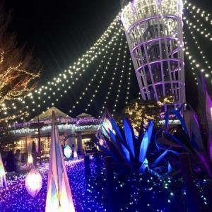 スタッフブログ♡江の島イルミネーション