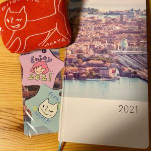 坂本真綾×ほぼ日手帳 2021 weeksを購入しました