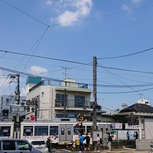 今日は松阪牛の日 真夏日に世田谷ぶらり