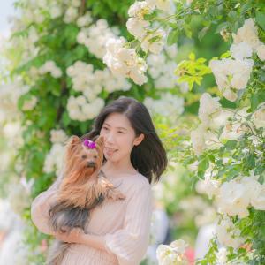 薔薇と素敵な家族写真♡