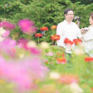 結婚記念日撮影の続き