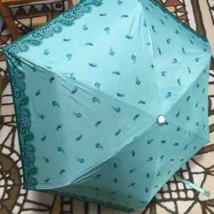 バレンタイン前日、傘を借りた長女。