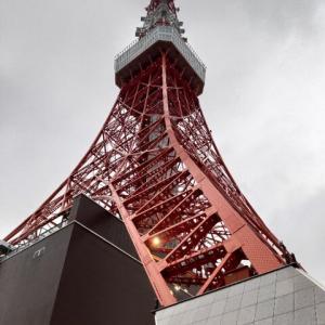 東京タワーの階段を登ってきた