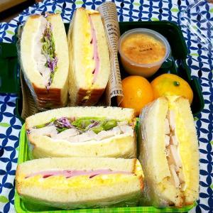 サンドイッチとシフォンケーキ  私大会なの