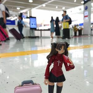 えっ、今日は成田空港開港記念日らしいよ?