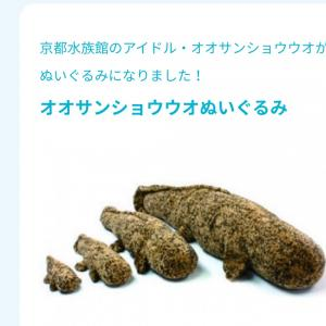 """幸せホルモン""""オキシトシン""""を一人で出す方法"""