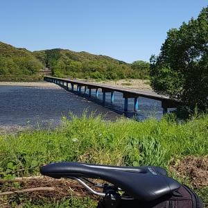 残り桜と沈下橋めぐりの57キロ