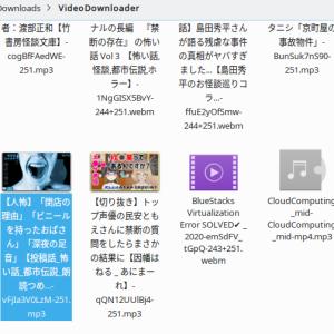俺ChromeBook〜Linux SnapアプリでYouTUbe&動画ソース収集