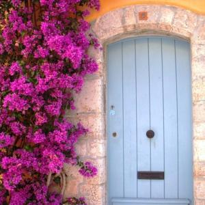 ブーゲンビリエが満開/花の町・南フランスイエール