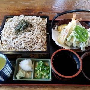 普通の天ぷらそばを食べました