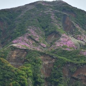 ピンクに染まる阿蘇の山