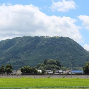 大分県童話の里玖珠にある「伐株山(きりかぶさん)」