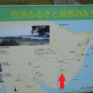 横浜戦番外編「白浜散歩~なめファ~♪」
