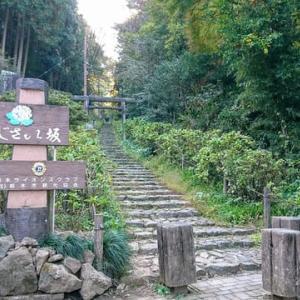 大平山あじさい坂からの1000段階段