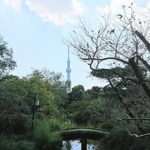 「向島百花園」に行きました。その2