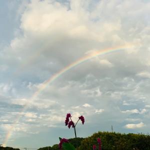虹は幸運のサイン