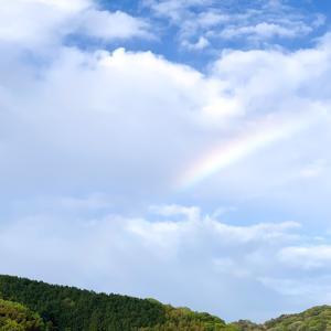 今朝の虹を見て