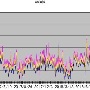 各種統計(体重・SBIポイント・忍者ポイント)2019年9月
