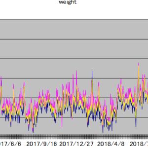各種統計(体重・SBIポイント・忍者ポイント)2019年10月