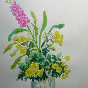 水彩「菊とストック」