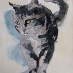 水彩「トラ猫」
