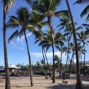 幸せいっぱいのハワイ島