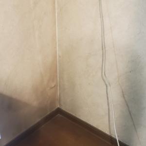 【DIY】未知との遭遇~20年モノの冷蔵庫裏~