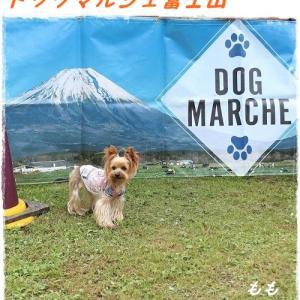 ドッグマルシェ富士山