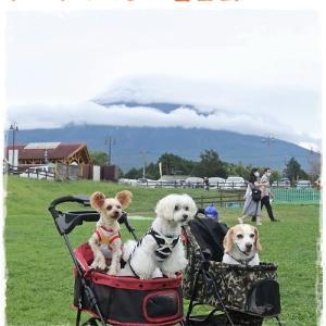 ドッグマルシェ富士山 2日目