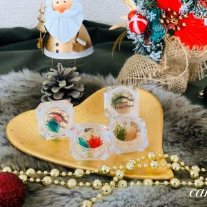 《限定》クリスマス特別カラーセット販売中!