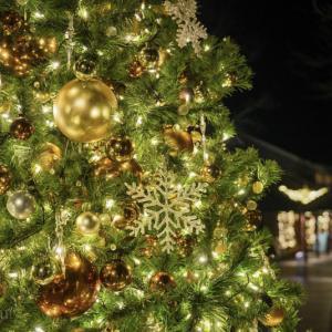 ハルニレテラスのクリスマス♪