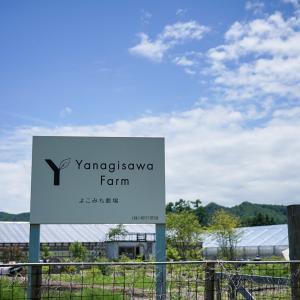 キッチンガーデン ヤナギサワファーム 今季営業開始です!