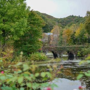 美しいのはバラの時期だけじゃない秋の軽井沢レイクガーデン