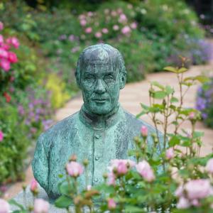 美しいバラに囲まれたアレキサンダー・クラフト・ショーさん像
