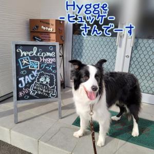 世界中で求めたいHyggeーヒュッゲーです