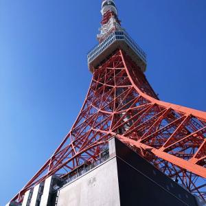お上りさんが、東京タワーをお登りさん