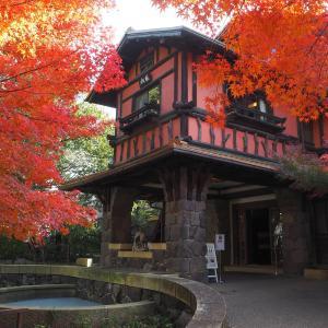 歴史的価値のある建物群~名古屋覚王山の揚輝荘~