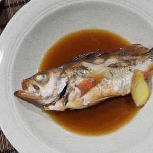 春告げ魚のメバル