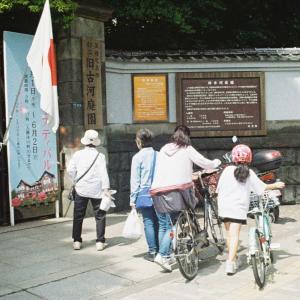 【ハローキティカメラ フラッシュAW】旧古河庭園 春のバラフェスティバル2019【フィルムカメラ】
