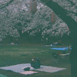 【GIMP】GIMPで簡単に暗い写真を明るくする方法【画像加工】