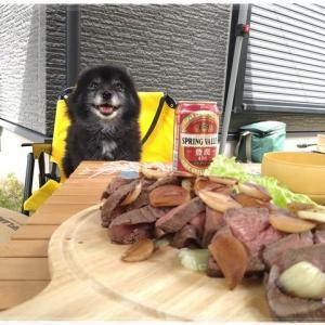 5月3日 庭BBQ ワンコも楽しむ